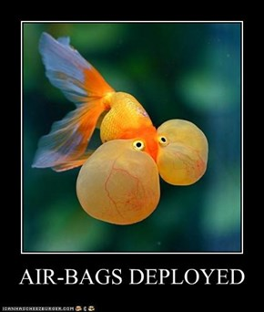 AIR-BAGS DEPLOYED
