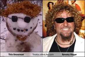 This Snowman Totally Looks Like Sammy Hagar