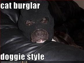cat burglar  doggie style
