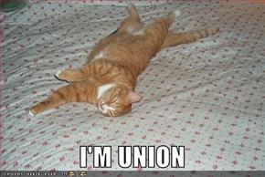 I'M UNION