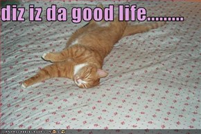 diz iz da good life.........