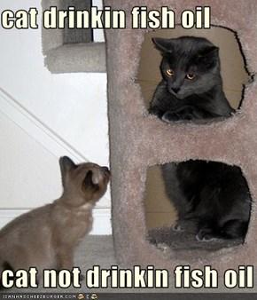 cat drinkin fish oil  cat not drinkin fish oil