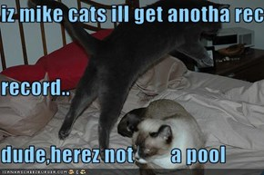 iz mike cats ill get anotha record.. record.. dude,herez not         a pool