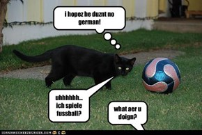 uhhhhhh... ich spiele fussball?