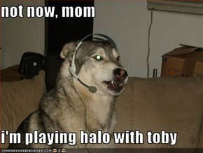 not now, mom  i'm playing halo with toby