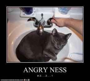 ANGRY NESS
