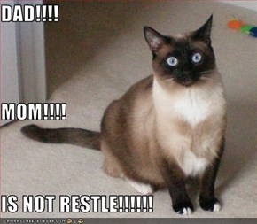 DAD!!!! MOM!!!! IS NOT RESTLE!!!!!!