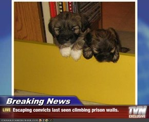 Breaking News - Escaping convicts last seen climbing prison walls.