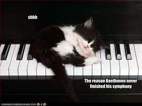 The reason Beethoven never finished his symphony