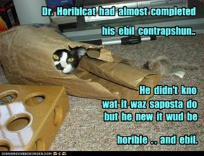 Dr.  Horiblcat  had  almost  completed