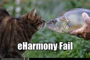 eHarmony Fail