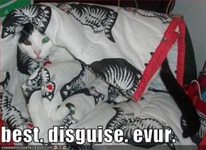 best. disguise. evur.