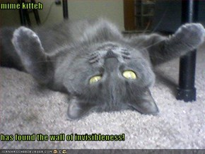 mime kitteh  has found the wall of invisibleness!