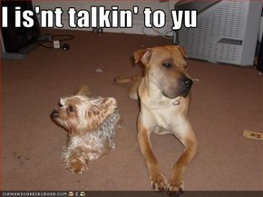 I is'nt talkin' to yu