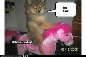 Yee -  haw!