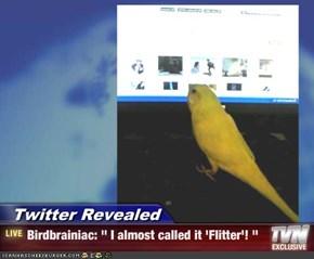 "Twitter Revealed - Birdbrainiac: "" I almost called it 'Flitter'! """