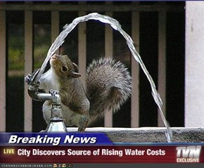 Breaking News - City Discovers Source of Rising Water Costs