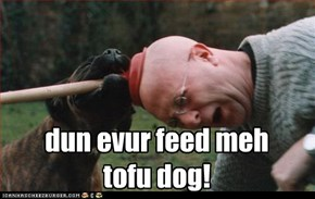dun evur feed meh tofu dog!