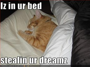 Iz in ur bed  stealin ur dreamz