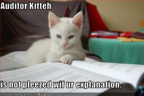 Auditor Kitteh  is not pleezed wif ur explanation.