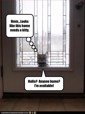 Hmm...Looks like this home needs a kitty.