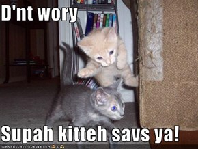 D'nt wory  Supah kitteh savs ya!