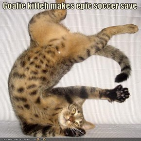 Goalie kitteh makes epic soccer save