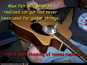 Max felt silly when he realized cat gut had never been used for guitar strings.