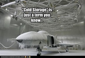 """Cold Storage"" is just a term you know..."