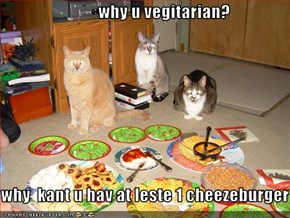 why u vegitarian?  why  kant u hav at leste 1 cheezeburger
