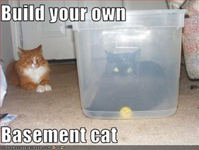 Build your own  Basement cat