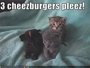 3 cheezburgers pleez!