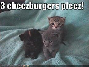 3 cheezburgers pleez!