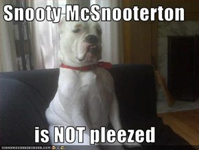 Snooty McSnooterton  is NOT pleezed