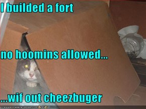 I builded a fort no hoomins allowed... ...wif out cheezbuger
