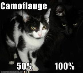 Camoflauge           50%            100%