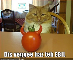 Dis veggee haz teh EBIL
