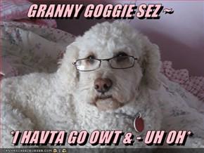 GRANNY GOGGIE SEZ ~  *I HAVTA GO OWT & - UH OH*