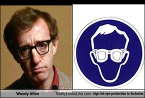 Woody Allen Totally Looks Like Sign fot eye protection in factories