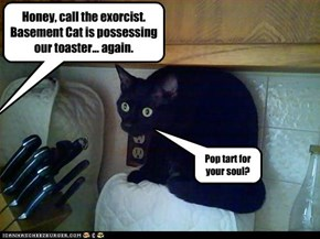 Honey, call the exorcist. Basement Cat is possessing our toaster... again.