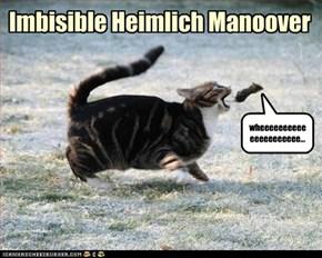 Imbisible Heimlich Manoover