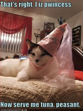 That's right. I iz pwincess.  Now serve me tuna, peasant.