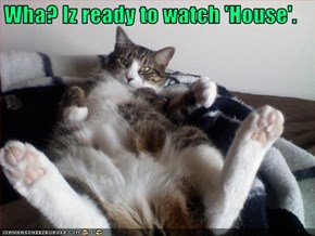 Wha? Iz ready to watch 'House'.