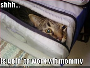 shhh...  is goin' ta work wit mommy