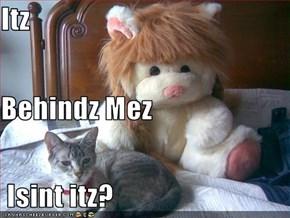 Itz Behindz Mez  Isint itz?
