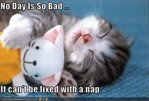 No Day Is So Bad ...   It can't be fixed with a nap.