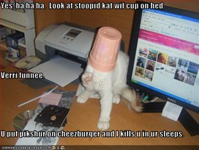 Yes, ha ha ha.  Look at stoopid kat wif cup on hed. Verri funnee. U put pikshur on cheezburger and I kills u in ur sleeps.