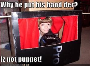 Why he put his hand der?  Iz not puppet!