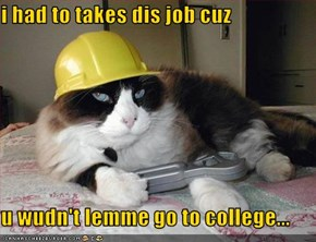 i had to takes dis job cuz  u wudn't lemme go to college...