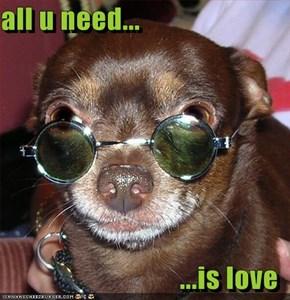 all u need...   ...is love